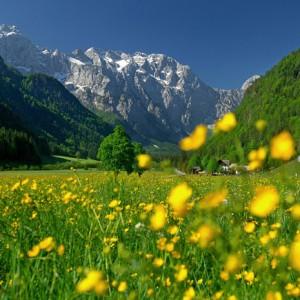 narava-krajinskega-parka